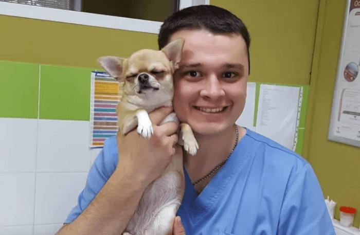 Ветеринар из Челябинска спасал животных, которых приносили на эвтаназию