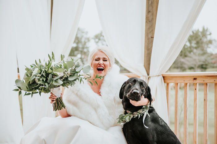 Восхитительная реакция пса на хозяйку в свадебном платье покорила интернет