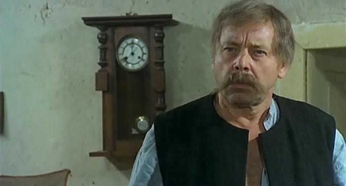 Как сложилась судьба актеров известного польского фильма «Знахарь»
